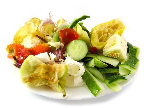 Composting - image of a plate full of scraps for composting